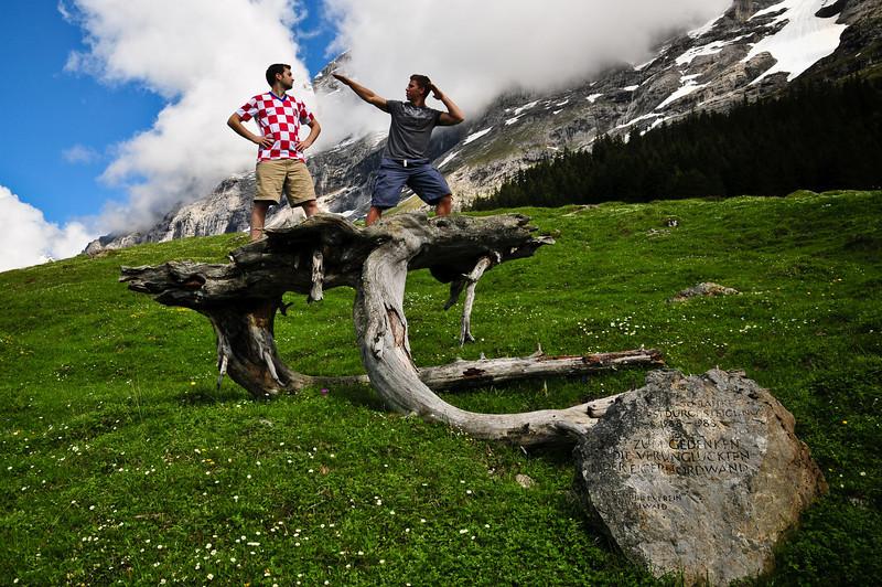 mountainHike-Tree-3