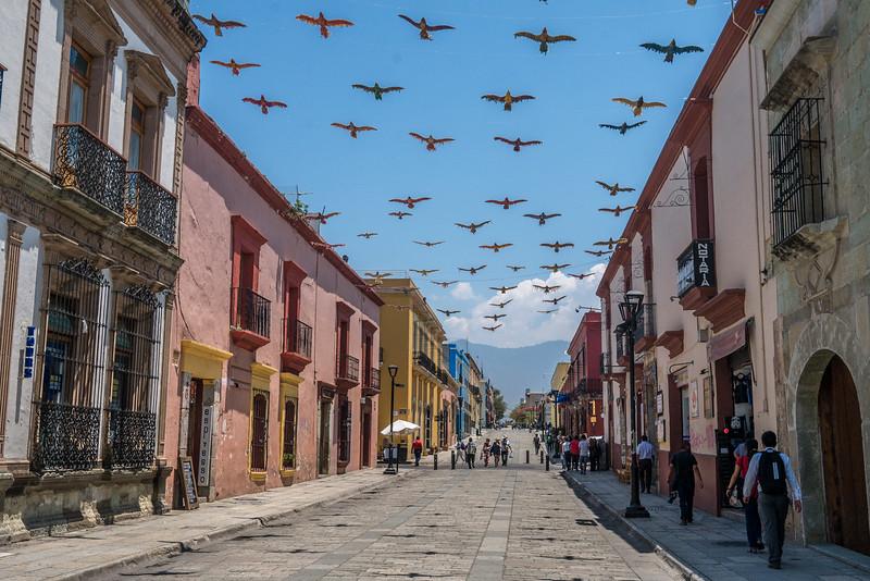 Oaxaca-Centro-4.jpg
