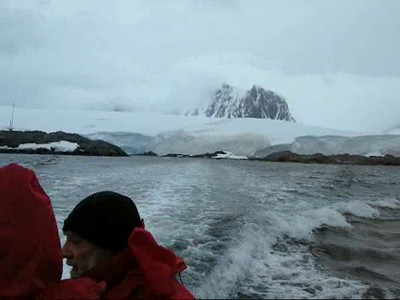 Antarctica and Ushuaia Animals
