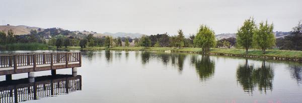 3099 (Los Alamos)