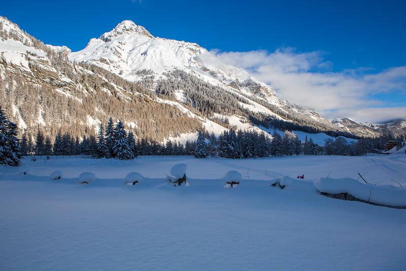 Rheinwald-Winter-D-Aebli-052.jpg
