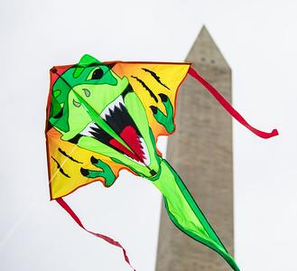 Blossom Kite Festival (2017)