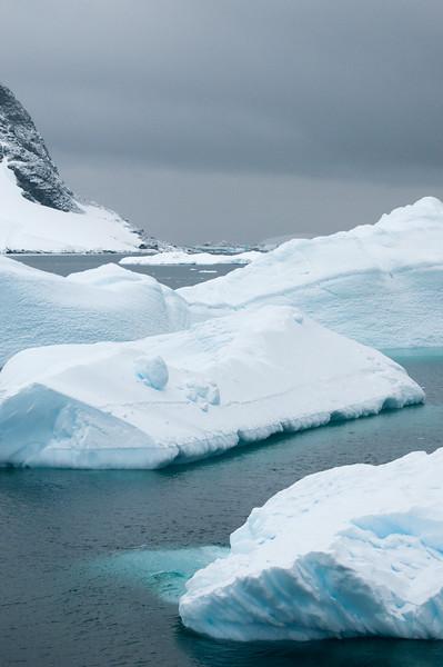 Antarctica 2015 (56 of 99).jpg