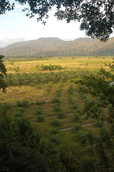 Wat Tam