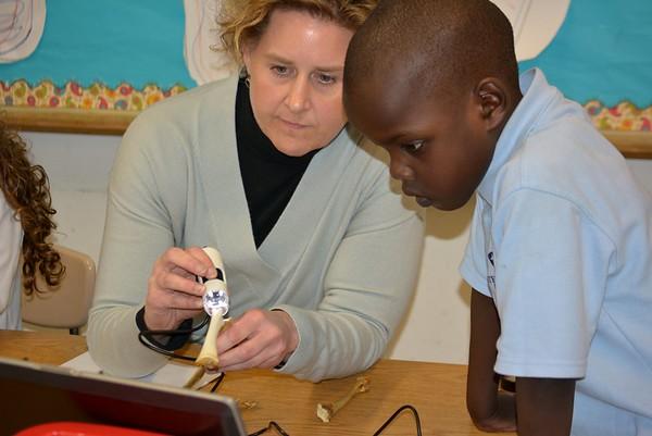 Kindergarten Students Examine Bones with Digital Microscope