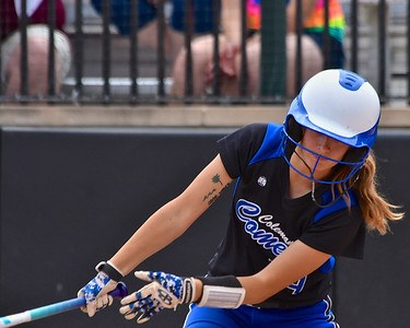 Coleman Softball Falls in D4 Semi-final game