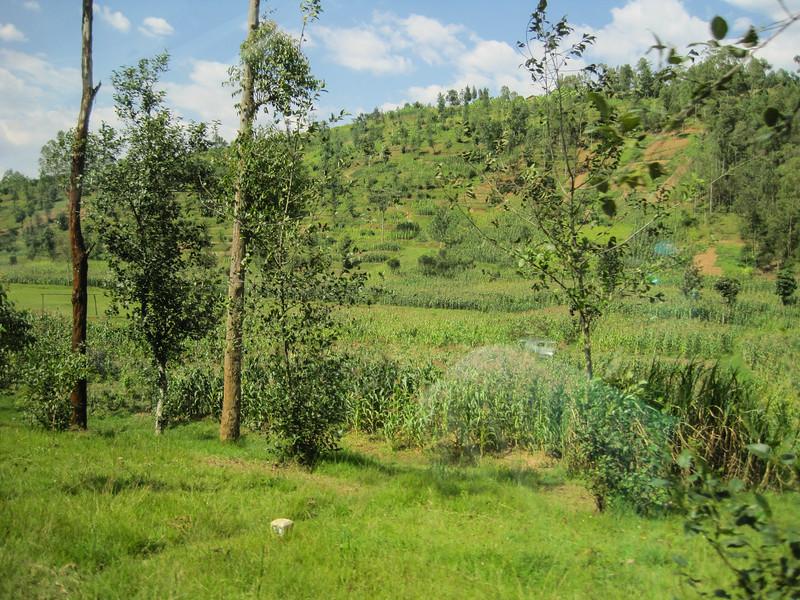 Rwanda_17_ixus-8884.jpg