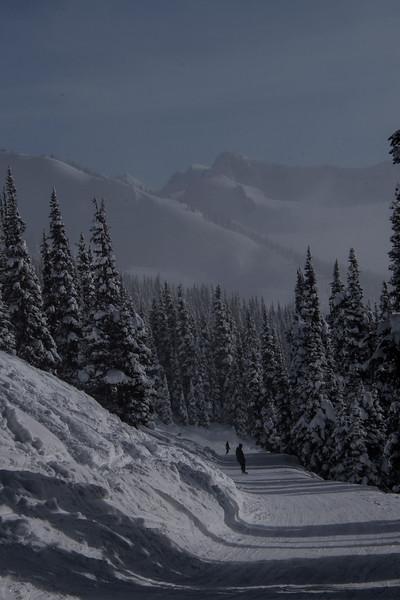 whistler snow scene a.jpg