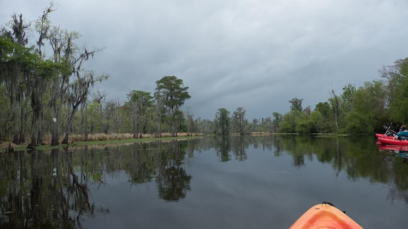 ManchacSwamp-6902.jpg