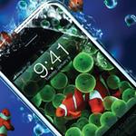 SDSDA-Image-300x165-contact-us.jpg