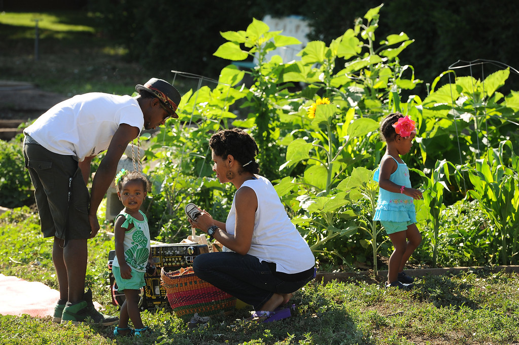 ". DENVER, CO - JULY 3:  Neambe Leadon Vita, right, and her husband Ietef Vita aka DJ Cavem Moetavation, left, bring their children Selasia, 3, in blue, at far right, and Libya, 21 months, in green, to help them tend to their gardens at 33rd and Elm street in Denver, CO. on July 3, 2013.  The couple try to grow as much food as possible as part of their vegan and healthy diet.   As part of our ""Summer of Love\"" series for the Style section we profile the relationship of DJ Cavem Moetavation (a.k.a. Ietef Vita) and his wife Neambe Vita.  They are proud and longtime Five Points residents. They\'re artists, community activists, musicians, teachers and more.  They espouse the idea of being vegan or vegetarian and promote eating healthfully and organically.  (Photo by Helen H. Richardson/The Denver Post)"