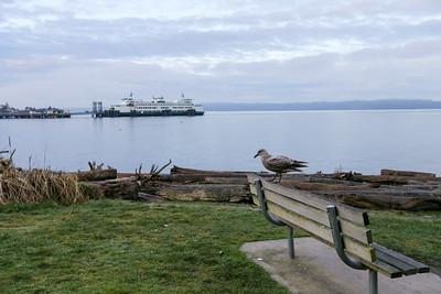 2016 West Seattle Beach Run