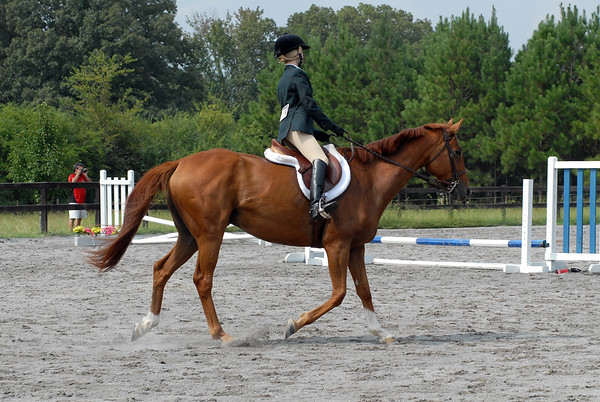 Classes 37-38 Begin Rider Walk Trot/Mini Course