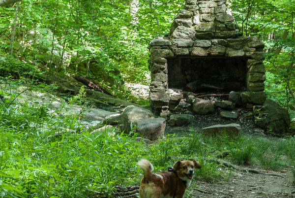 2013-06-23 Hike at Buttermilk Falls with Dogs
