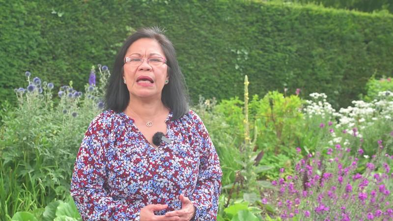 st james day healing garden