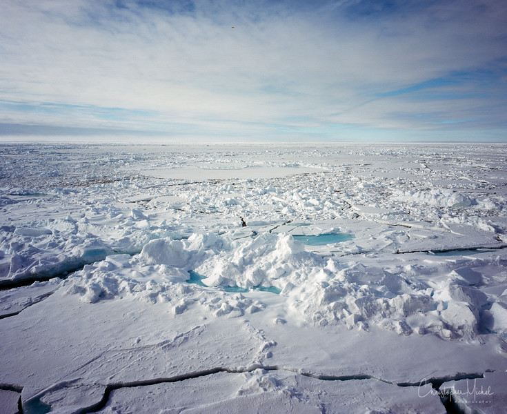 arctic mamiya.jpg
