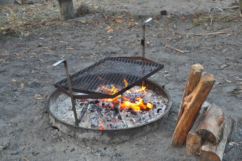 2011 03 06 Highlands Hammpock Camping 058.JPG