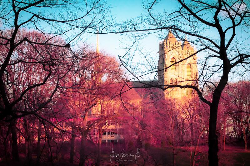 newark-new-jersey-photographer-new-york-nyc-photography-jorge-sarmiento-jr-IMG_7790.jpg