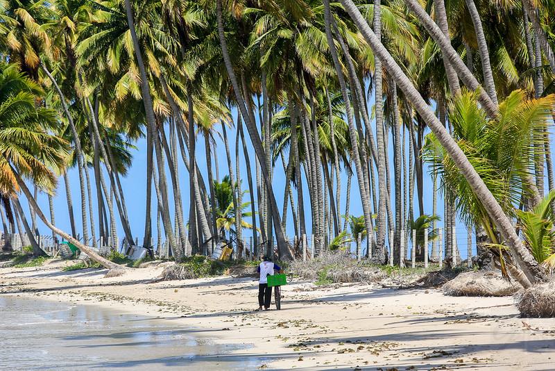 Praia dos Carneiros (Lamb´s Beach), Pernambuco - Brasil