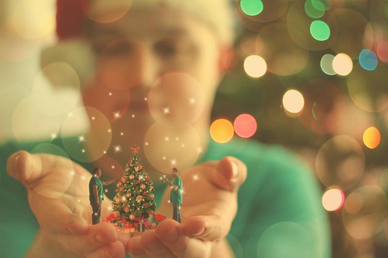Merry Little Christmas..... 309/365 12/6/13