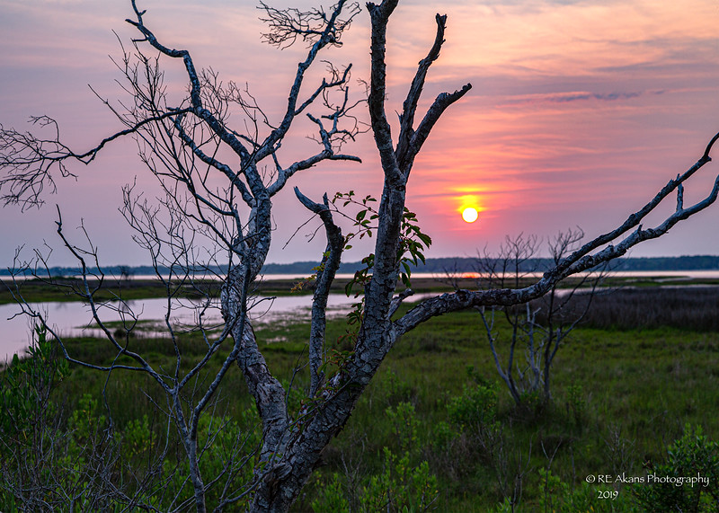 Assateague Sunset 9544.jpg
