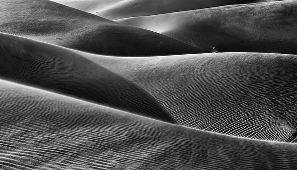 Shapes of the Desert B/W