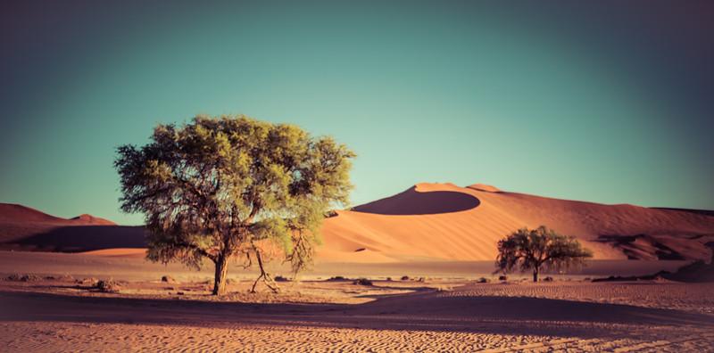 20140925-Africa-Day6-7-DSC00814.jpg