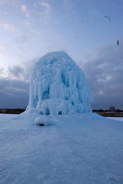 2/2/09 Belle Isle Ice Tree