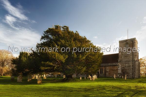 St Bartholemews Churh, Shapwick