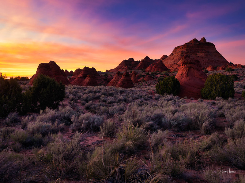 Coyote Buttes South sm.jpg