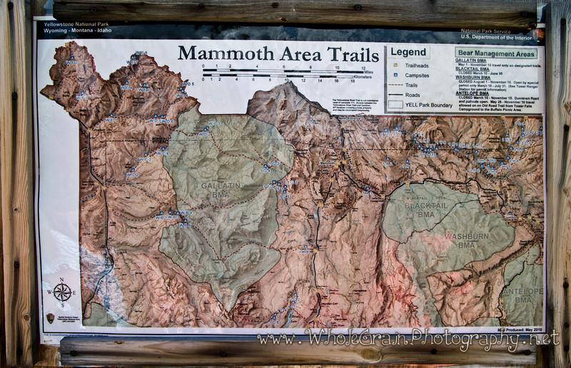 20100713_Yellowstone_2839_1.jpg