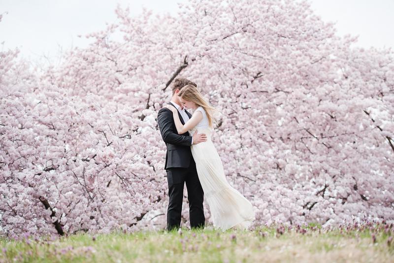 Cherry Blossoms (54 of 182).jpg