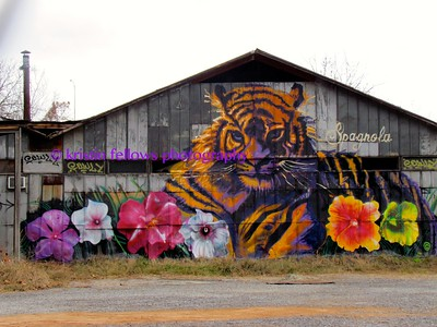 A Tiger in the River Arts District