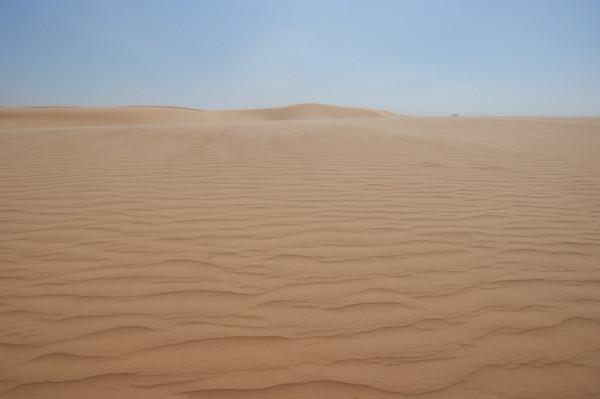 Labor Day 2010 Little Sahara