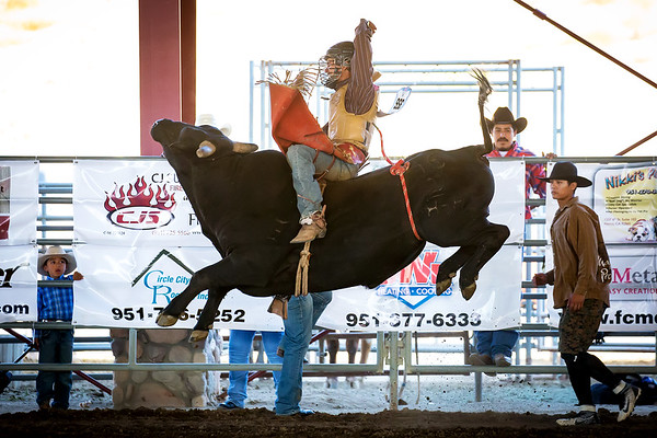 2017 Norco Horseweek - Extreme Bull Riding