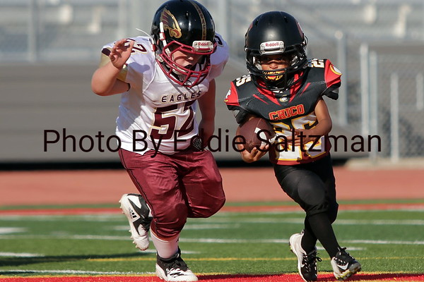 Chico Junior Football