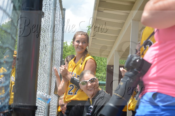 2014 Goreville Lady Blackcats Softball 2014