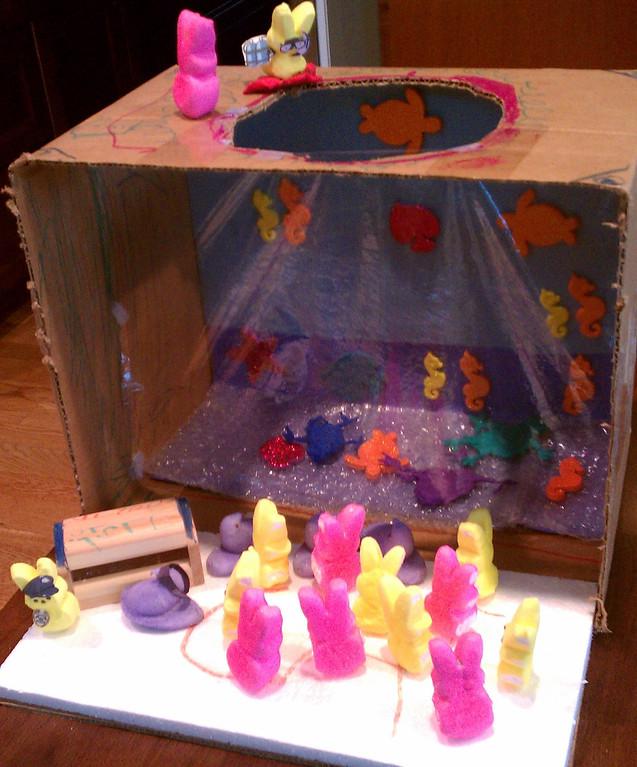 ". \""Peeping Into the Aquarium\"" Sophie Wohl, Age 5"