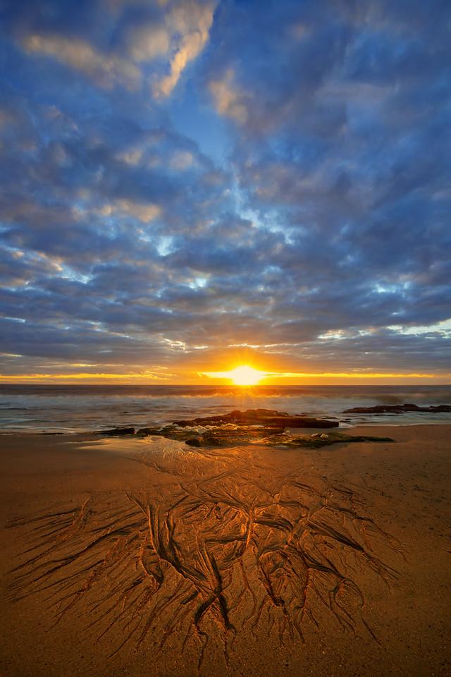BFF Sunrise