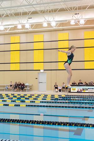 Diving/swimming 2010