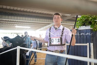 Junior Livestock & Poultry Auction