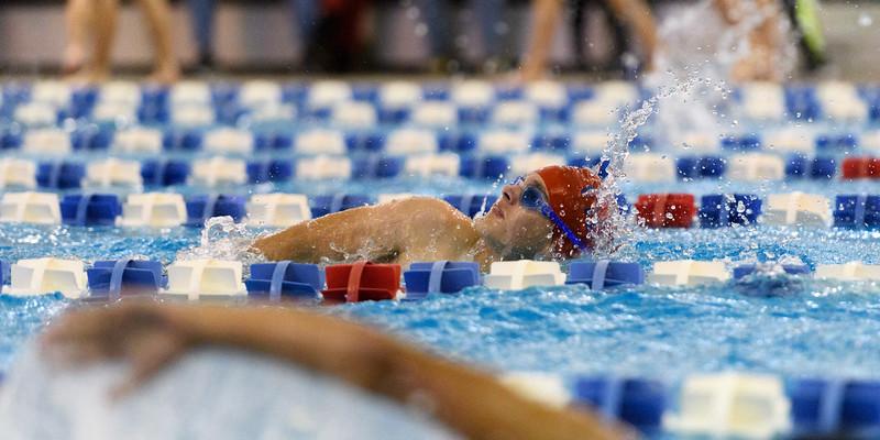 KSMetz_2017Nov29_SHS Swimming9102.jpg