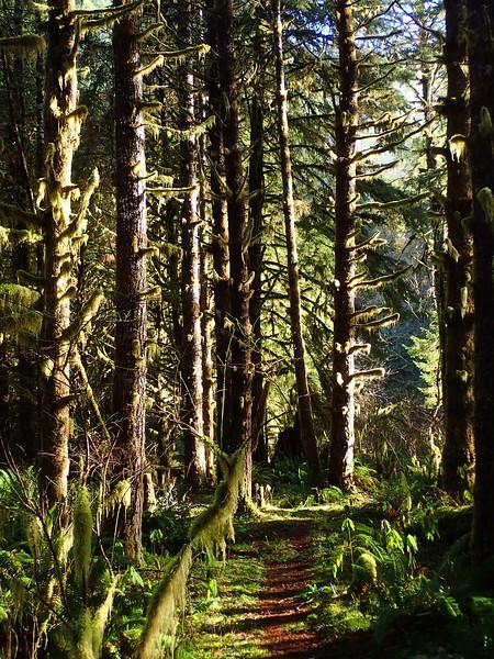 Oregon Coastal Wilderness Areas