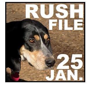 25 JAN. RUSH FILE
