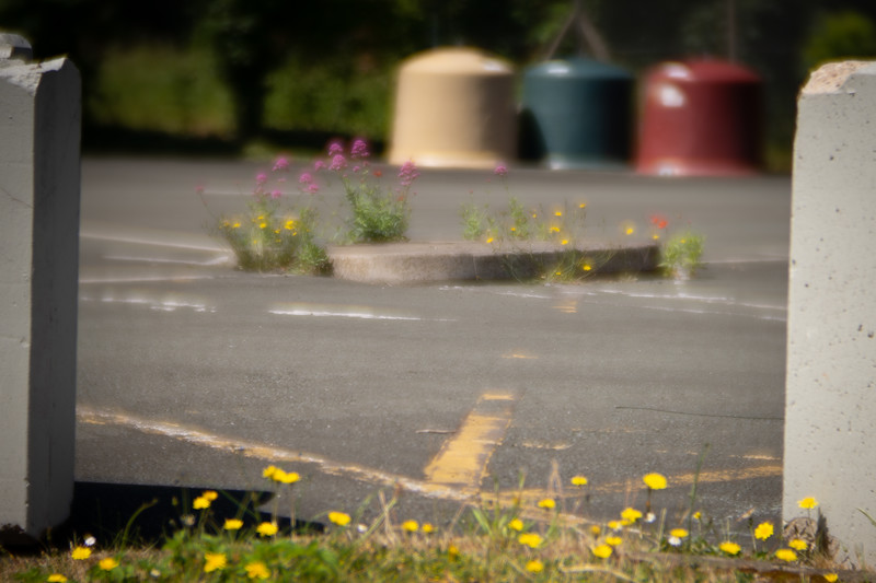Dis-used car park