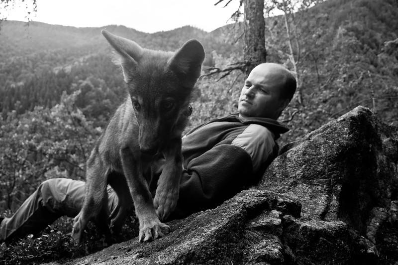 Miloš Majda a vlk