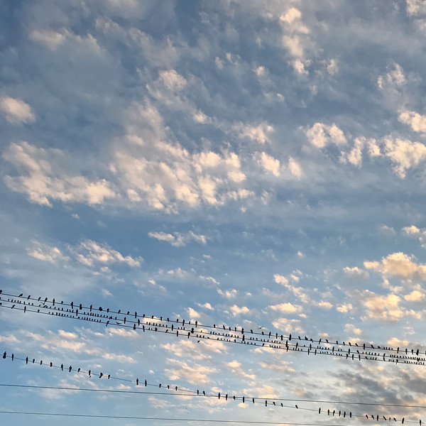 austin-clouds-at-sunset-11-11-16-1.jpg