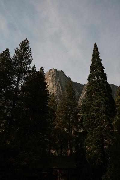 Forest_City_Photographs_Honeymoon_Califonia_San_francisco_Yosimite-160.jpg