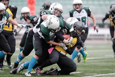 2019 vs Winnipeg Wolfpack (May 5)