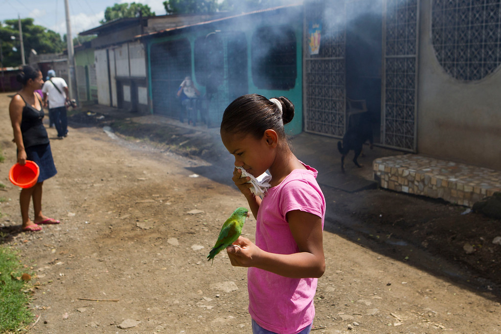 . A girl uses a handkerchief to cover her nose and mouth as she holds her pet parakeet, while a worker from the Nicaraguan health ministry fumigates in her neighborhood in Managua, Nicaragua, Thursday, Oct. 31, 2013. According to the government, more than 5,000 cases of dengue have been reported this year and has claimed 14 lives. (AP Photo/Esteban Felix)